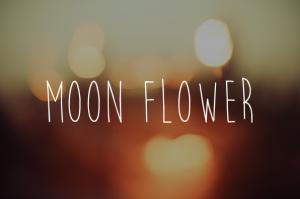 Fonte Moon Flower