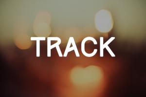 Fonte Track